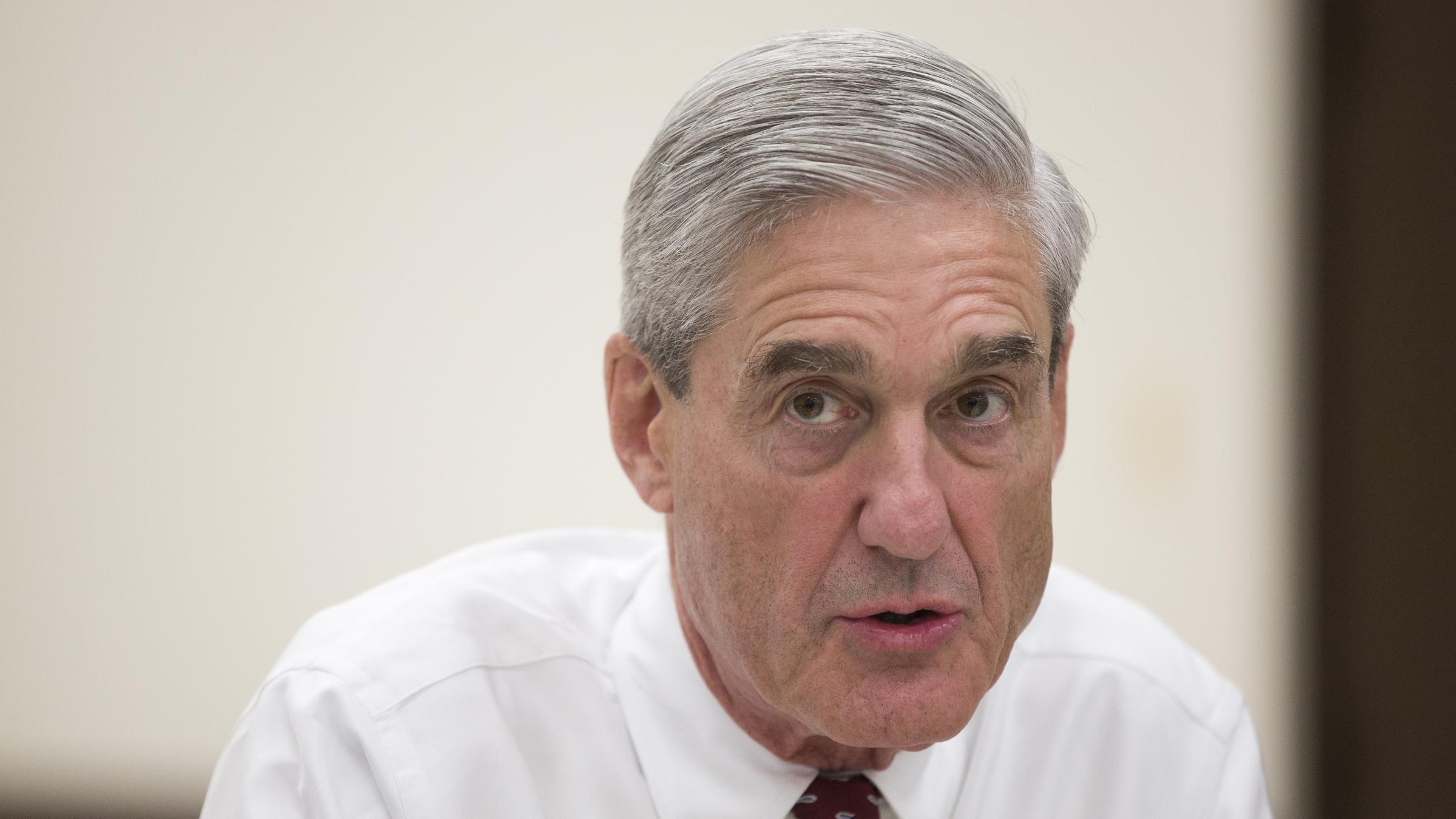 Paul Ryan says everyone should just let Robert Mueller do his job